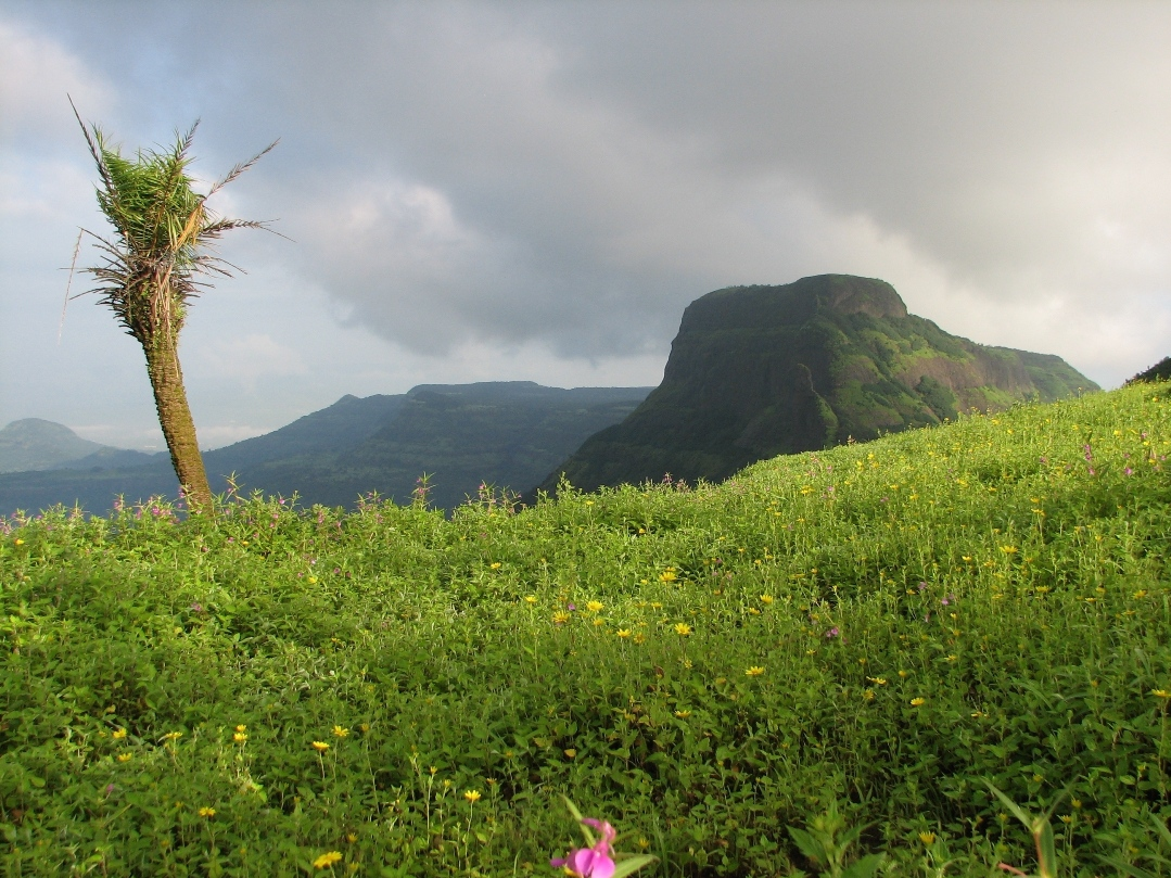 Sahyadri Mountain