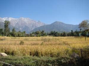Andretta-Himachal-Pradesh-India