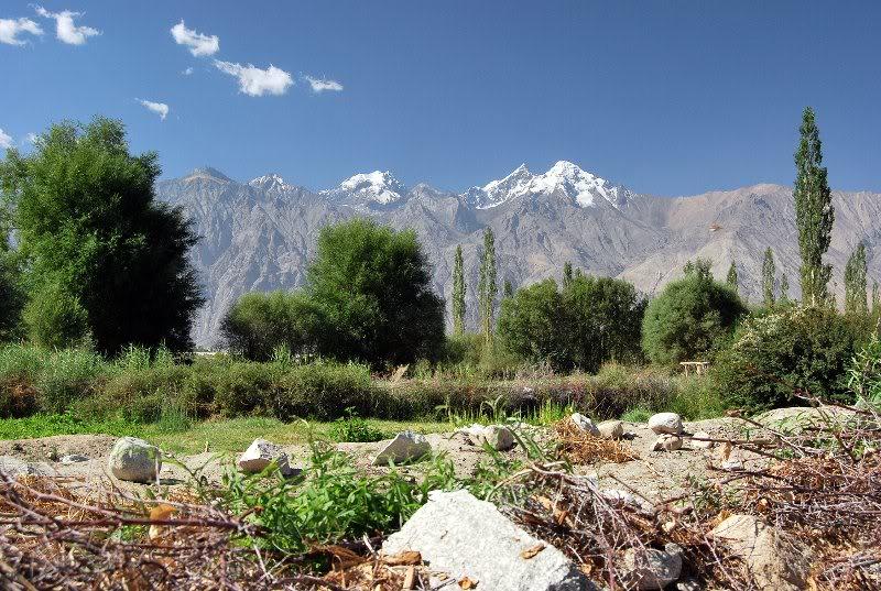 Nubra Valley – Leh-LadakhIndia Travel Guide   India Travel Guide