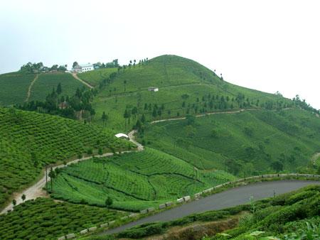 Horsley hills -andhra pradesk