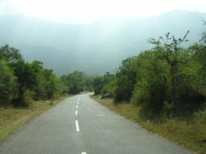 Masinagudi road