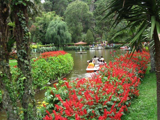 Sims Park in Coonoor
