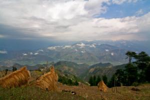 Khajjiar - himachal