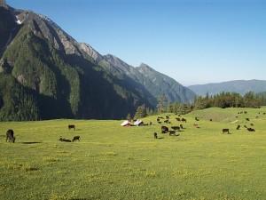 Rohru - valley