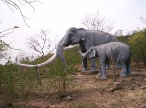 Shivalik Fossil Park suketi