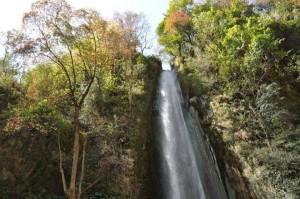tiger falls - Chakrata