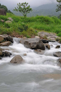 Kunhoo Dhar