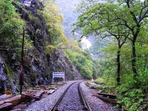 Trekking in Dudhsagar