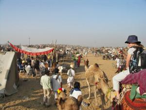 pushkar festivals