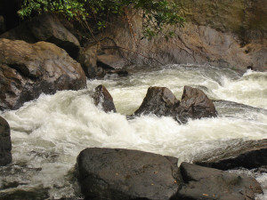 Thommankuth water falls