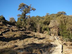 kumaon trekking