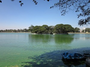 Ulsoor Lake - Bangalore