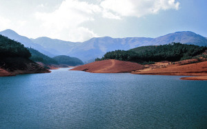 ooty avalanche lake