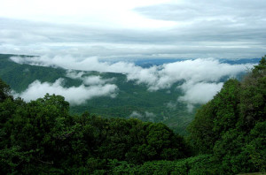 Amboli hills