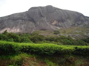 Anaimudi peak Munnar