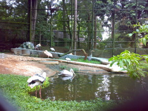 Zoological Garden trivandrum