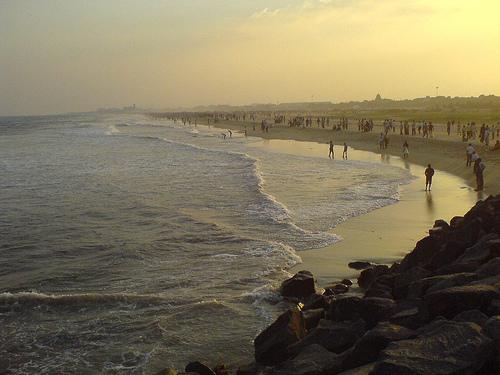 Image Result For Aquarium In Chennai Marina Beach