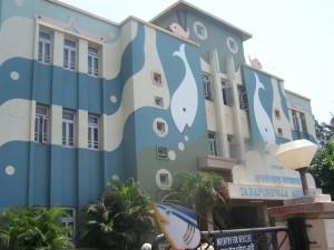 Taraporewala Aquarium Mumbai