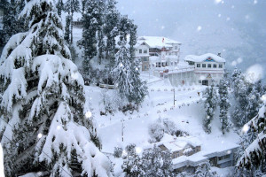 Mashobra snow fall in winter