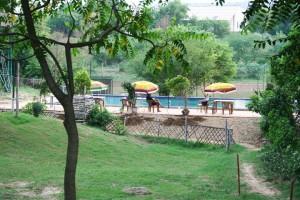 Saras Resort Damdama lake