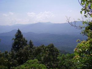 Agumbe hill station Agumbe hill station