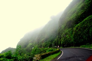 Amboli Hill Station The Most Enchanting List of Hill Stations near Mumbai for a Break