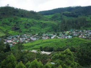Devikulam hill station 7 Best Places In India To Visit This monsoon