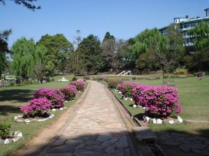 Lady Hydari park shillong Honeymoon in Shillong
