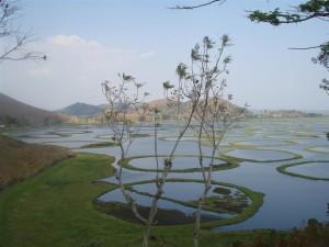 Loktak Lake Manipur Loktak Lake - Manipur