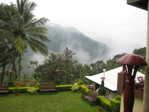 Munnar beauty Honeymoon in Munnar