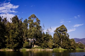 ooty lake Hill Stations in South India
