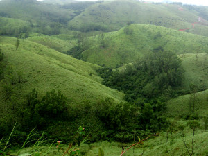 vagamon kerala Vagamon Hill Station - Kerala