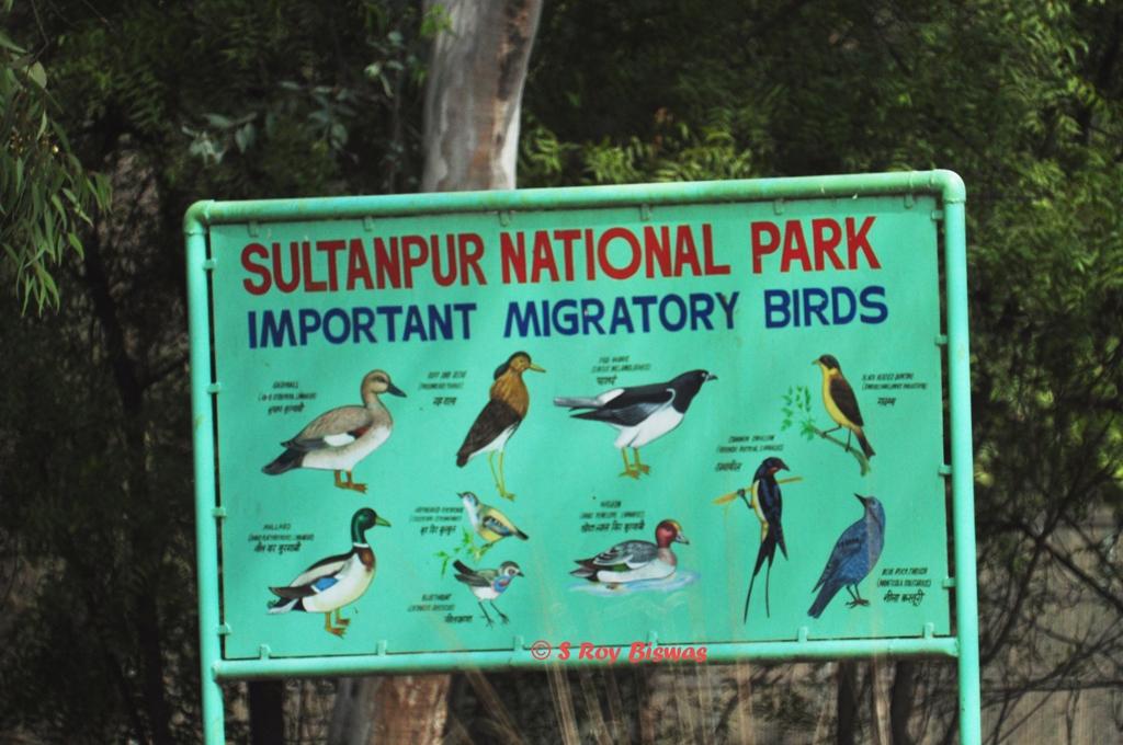 Bill Board in Sultanpur