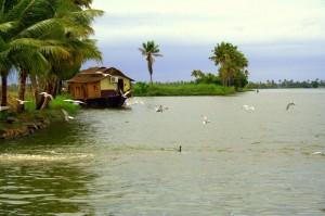 Kerala1321956185 Honeymoon tour in South India