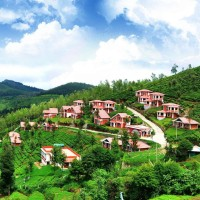 "Bangalore Ooty Coonoor The must-visit ""coolest"" holiday destinations in India this summer"