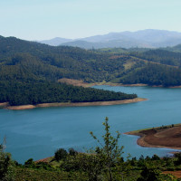 Emerald Lake Nilgiris Arguably the best honeymoon places in India in January