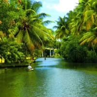 backwaters of alappuzha in kerala1 Arguably the best honeymoon places in India in January