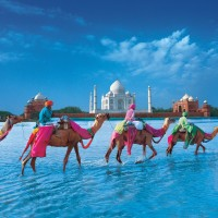 domestic tours india Get to know more about the best places to visit in India