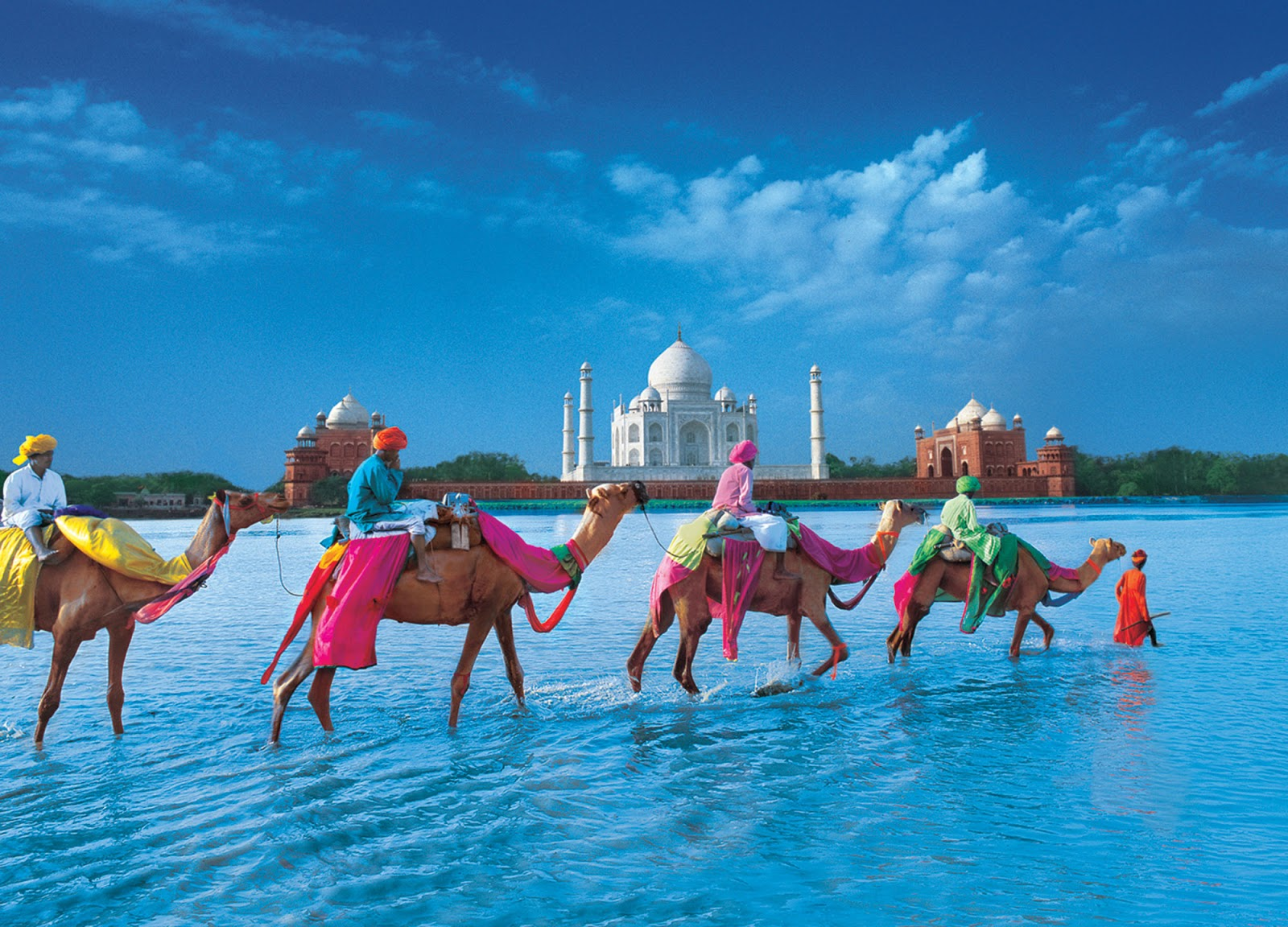 domestic-tours-india