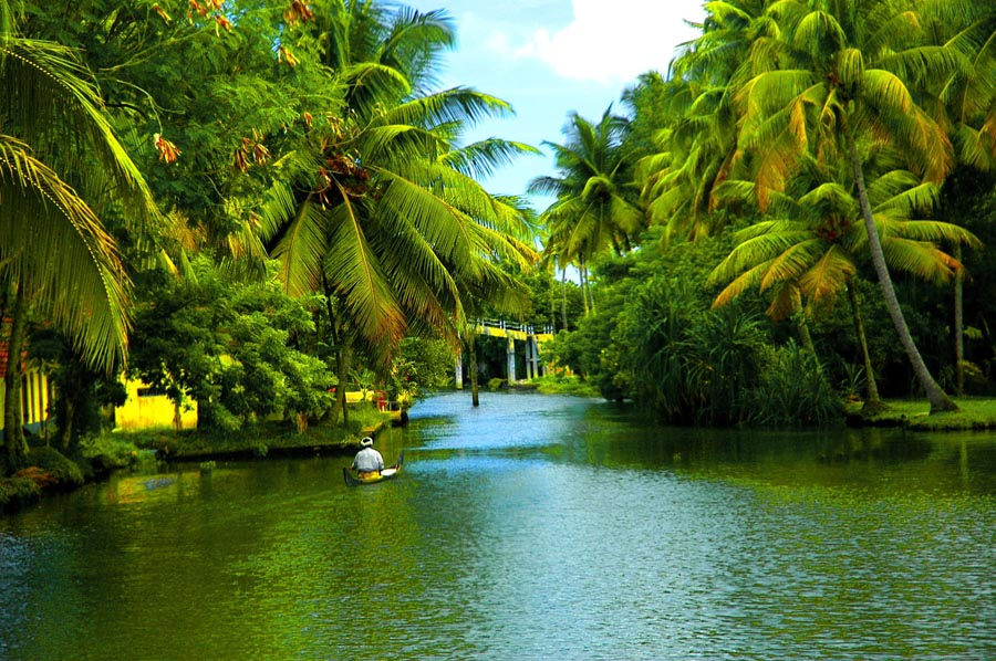 Backwaters of Alappuzha in Kerala1 The Most Appealing Top 5 Honeymoon Destinations in India