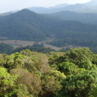Landscape in Coorg Weekend Getaways to Brew Some Romance