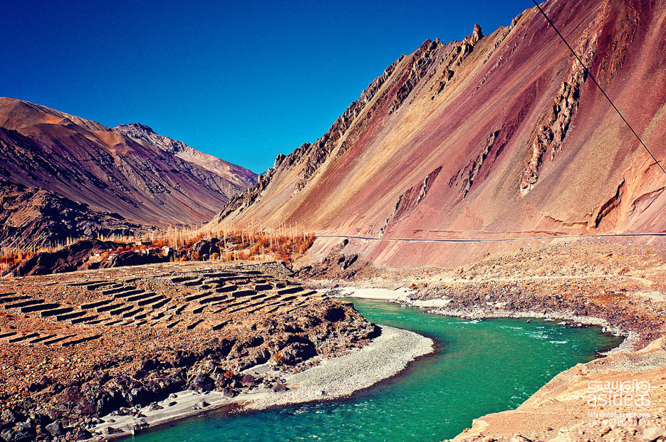amazing leh ladakh 2016 luxurious leh Shey palace 11150 421 447 Most Romantic Destinations in India to Kick Start Your Married Life