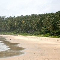 ezhara beach tour kannur It's all about tranquillity at famous beaches in Kerala India