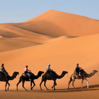 rajasthan tour 6 The Most Appealing Top 5 Honeymoon Destinations in India