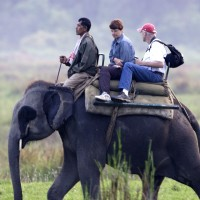 Elephant safari in Kaziranga 30 things do to after turning 30 in India