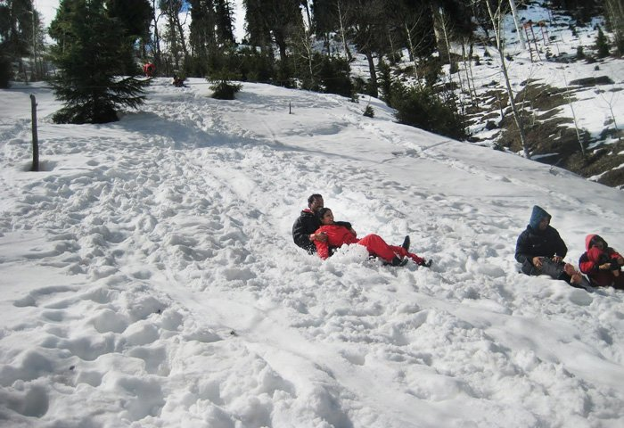 shimla-honeymoon-tour