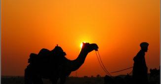 desert india