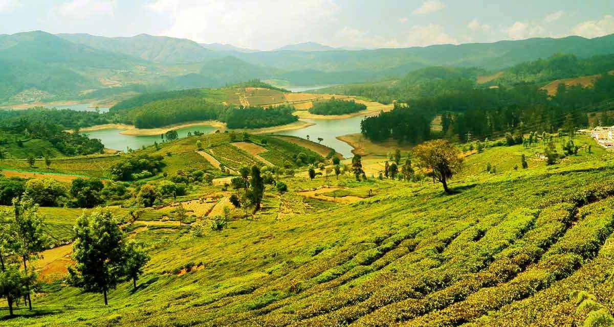 mys3 A tour to Uttarakhand- nature's paradise