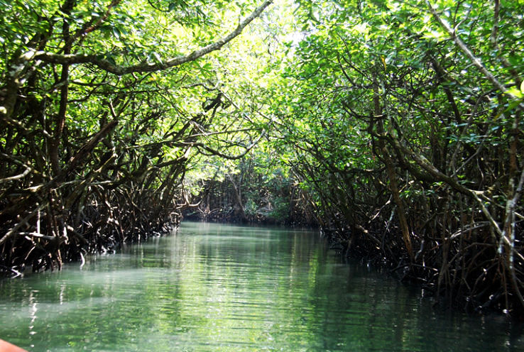 8 Best Places to Visit in the Andaman and Nicobar Islands 7