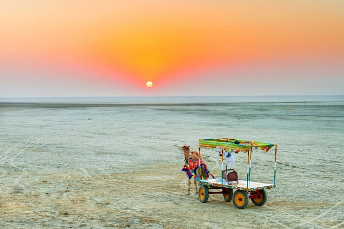 travel triangle A 3-Minute Guide To Kutch Rann Utsav